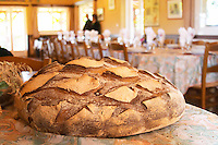 A big loaf of country bread Ferme de Biorne duck and fowl farm Dordogne France
