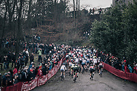 Women's race start<br /> <br /> UCI CX World Cup Namur / Belgium 2017