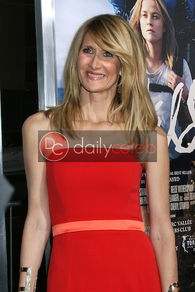 Laura Dern<br />