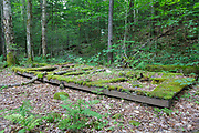 Decaying tent platform in the area of the old Franconia Brook campground along Lincoln Woods Trail in Lincoln, New Hampshire.