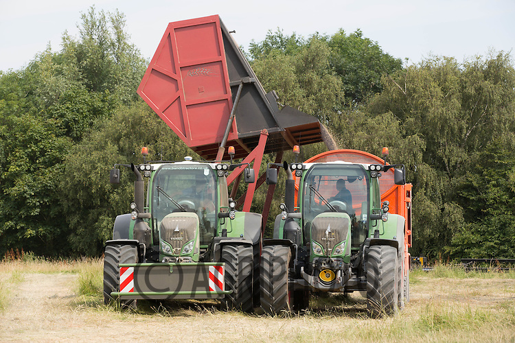 Tipping oilseed rape out of a side emptying chaser bin into a waiting tractor and trailer<br /> Picture Tim Scrivener 07850 303986