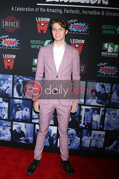 """Ty Simpkins<br /> at """"Excelsior! A Celebration of the Amazing, Fantastic, Incredible & Uncanny Life of Stan Lee,"""" TCL Chinese Theater, Hollywood, CA 01-30-19<br /> David Edwards/DailyCeleb.com 818-249-4998"""