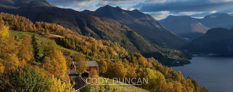 Scenic hillside farm in autumn above Norddalsfjord, Kilsti, Møre og Romsdal, Norway