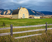 Gallatin County, MT: Yellow barn and wood fence line under the Bridger Range