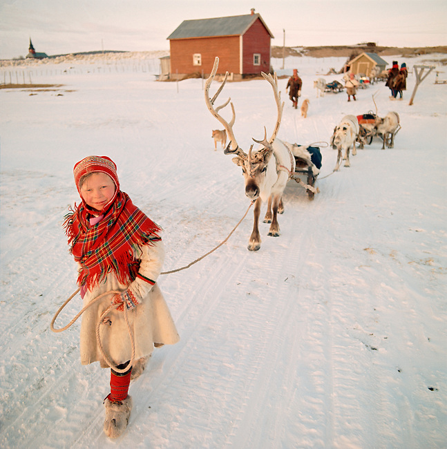 Young Saami girl, Inga-Anna, leads sled Reindeer at the start of the Spring migration.Kautokeino. Norway