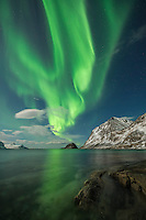 Northern Lights fill sky over Haukland beach, Vestvågøy, Lofoten Islands, Norway