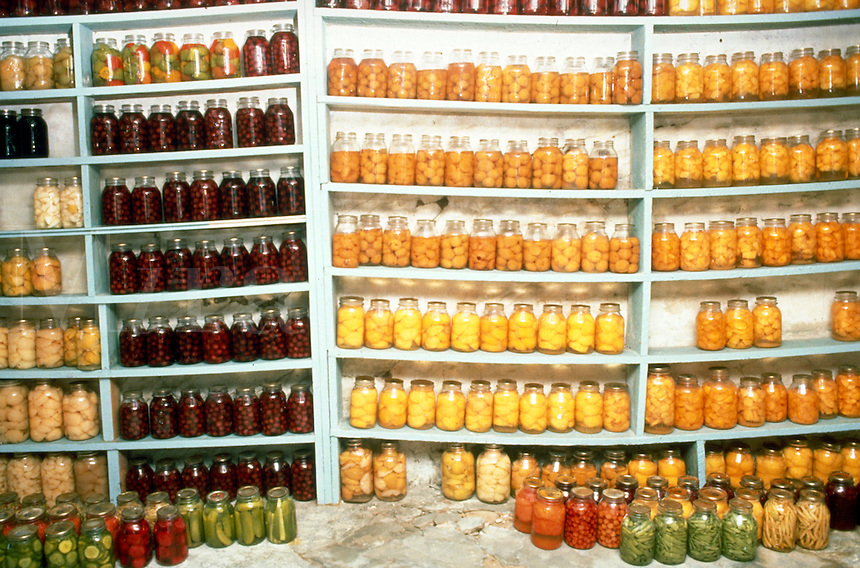 Shelves of canned fruits and vegetables fill a basement wall in an Amish home. Lancaster Pennsylvania United States Amish home.