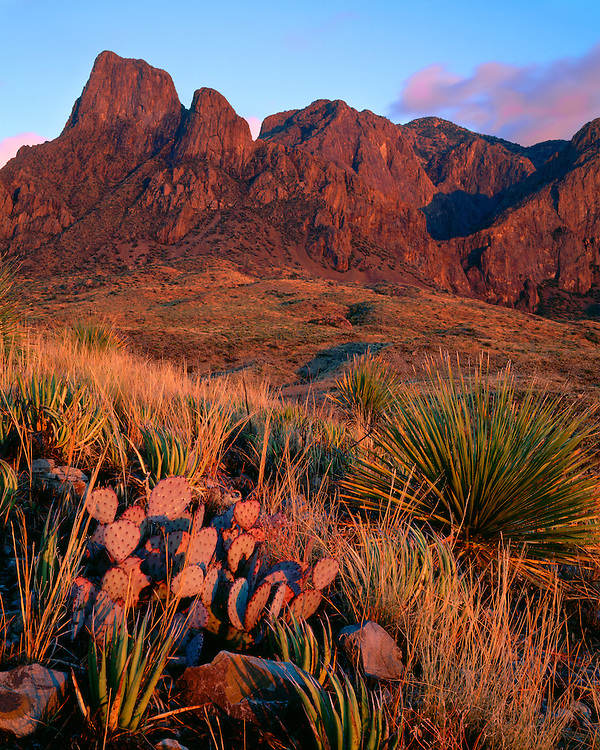 Sunset light on the Chisos Mountains; Big Bend National Park, TX