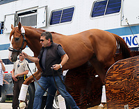 LOUISVILLE, KY - JUN 11: Triple Crown winner Justify returned to Churchill Downs, Louisville, Kentucky two days after winning the Belmont Stakes in New York. He was greeted by a crowd and a new sign showing his Triple Crown accomplishment. (Photo by Mary M. Meek/Eclipse Sportswire/Getty Images)