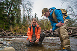 Hoh River, Hoh River Trust, The Nature Conservancy, TNC, Emily Howe, Ryan Haugo, Kyle Smith, forest ecologists, stream ecologists, assessing, forest habitat, river habitat, spring, 2017, Olympic Peninsula, Washington State, Pacific Northwest, USA,