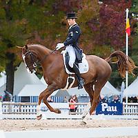 1-NZL/AUS-RIDERS: 2015 FRA-Les Etoiles de Pau CCI4* / CIC2*