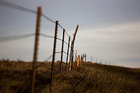 A barbed-wire fence separates fields on the Swartz farm south of Ulm, Montana, USA.