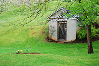 Rustic shed with wooden door nestled under tree at Meander Plantation, Charlottesville, Virginia