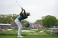Dustin Johnson (USA) on the 17th tee during the final round at the PGA Championship 2019, Beth Page Black, New York, USA. 19/05/2019.<br /> Picture Fran Caffrey / Golffile.ie<br /> <br /> All photo usage must carry mandatory copyright credit (© Golffile | Fran Caffrey)