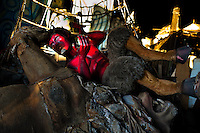 A discarded carnival statue of a devil thrown into a pile in the Samba school warehouse in Rio de Janeiro, Brazil, 14 February 2012. Most of the large carnival floats, colorful designs and fancy costumes are dismantled, cut into pieces or simply thrown into garbage right after the last day of the Carnival. The low-tech materials as fiberglass, plastic or polystyrene, which most of the of the carnival floats and statues are made of, are stocked in the warehouses to be recycled and used in the future parades. However, there is no use for some of the statues so they slowly fall apart into pieces forming a ?Carnival cemetery? in the industrial yards around the port of Rio de Janeiro.