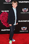 BRYCE ROBINSON. Red carpet arrivals to the star-studded world premiere of Valentine's Day at Grauman's Chinese Theater in Hollywood, California, USA. February 8, 2010.