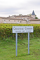 Vineyard. Winery building. Chateau Corbin. Saint Emilion, Bordeaux, France
