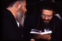 ISRAELE, Gerusalemme. Due ebrei ultraortodossi in preghiera.