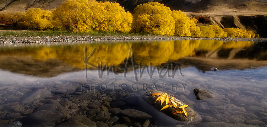 hanmer springs, reflection, autumn trees, canterbury, new zealand