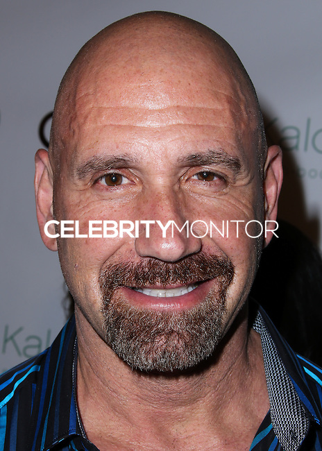 BEVERLY HILLS, CA, USA - JULY 24: Bruno Amato at the Genlux Magazine Summer July 2014 Issue Release Party held at the Luxe Hotel on July 24, 2014 in Beverly Hills, California, United States. (Photo by Xavier Collin/Celebrity Monitor)