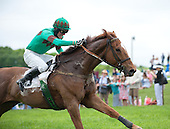 Kieran Norris and Holy Your Fire closeup in the race to the wire in the Winterthur Bowl.