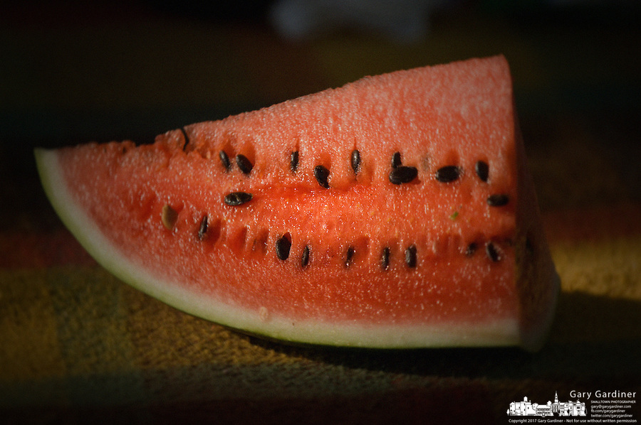 Watermelon sliced ready for a picnic dessert.