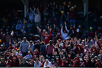 NWA Democrat-Gazette/ANDY SHUPE<br /> Arkansas fans call the Hogs against Missouri Saturday, March 16, 2019, at Baum-Walker Stadium in Fayetteville. Visit nwadg.com/photos to see more photographs from the game.