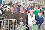 Looking at the horses at the Castleisland Horse Fair on Friday was front l-r: Moss O'Connor Castleisland,  Charlie Moriarty, Charlie, Maria, Ben Brosnan, Jason Horan all Currow. Back row:  Hugh O'Donoghue, Eoin O'Meara and Fianan Walsh