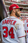 7 October 2016: Washington Nationals outfielder Bryce Harper looks out from the dugout prior to starting Game 1 of the NLDS against the Los Angeles Dodgers at Nationals Park in Washington, DC. The Dodgers edged out the Nationals 4-3 to take the opening game of their best-of-five series. Mandatory Credit: Ed Wolfstein Photo *** RAW (NEF) Image File Available ***