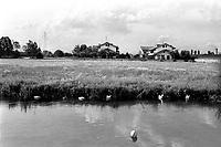 il Naviglio della Martesana a nord di Milano, appena fuori città. Un pallone in acqua --- Naviglio Martesana channel north of Milan, just outside the city. A ball in the water