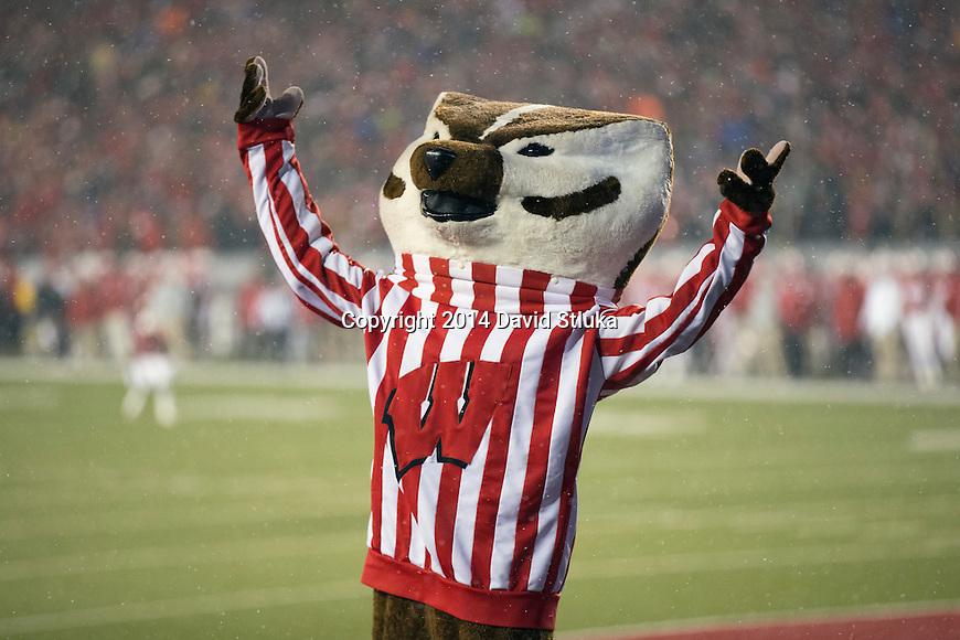 Wisconsin Badgers mascot Bucky Badger celebrates a touchdown during an NCAA football game against the Nebraska Cornhuskers Saturday, November 15, 2014, in Madison, Wis. The Badgers won 59-24. (Photo by David Stluka)