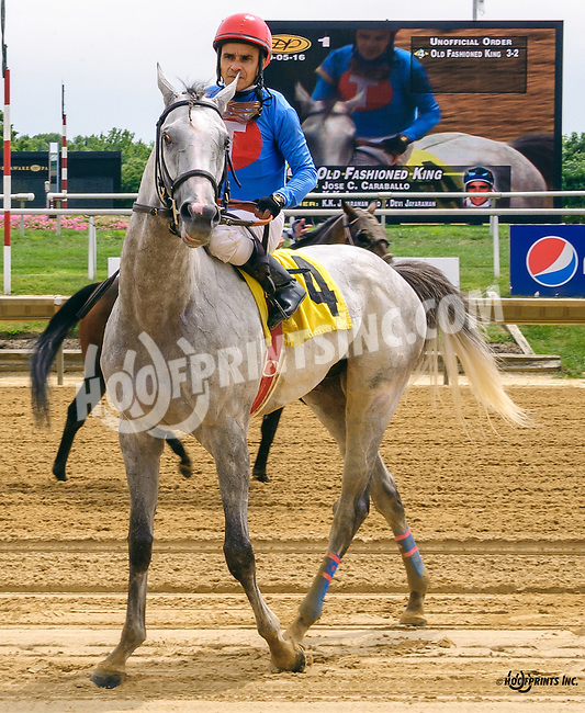 Old Fashioned King winning at Delaware Park on 9/5/16