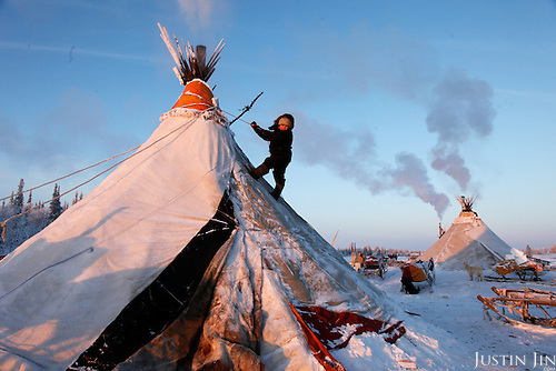 """Nenets live in -40C (-40F) in tents, or """"Yurts"""", in the Arctic tundra in the Russian Nenets Autonomous Region.  .Their main livelihood is  reindeers -- they sell the meat to sausage factories and the antlers to China for use as traditional medicine including aphrodisiac."""