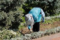 Arbeiterinnnen am Platz der Unabh&auml;ngigkeit (Mustaqillik Maydoni), Taschkent, Usbekistan, Asien<br /> Gardener at square of independence (Mustaqillik Maydoni), Tashkent, Uzbekistan, Asia