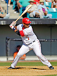 5 March 2006: Wiki Gonzalez, catcher for the Washington Nationals, at bat during a Spring Training game against the Baltimore Orioles. The Nationals defeated the Orioles 10-6 at Space Coast Stadium, in Viera Florida...Mandatory Photo Credit: Ed Wolfstein..