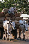 Cotton being brought for milling in Warangal, India