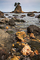 Low tide at Minokake Rocks south of Shimoda Japan.