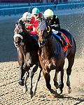NEW YORK, NY - APRIL 08: Green Gratto #7, ridden by Christopher DeCarlo, holds of Unified to win the Carter Handicap at Aqueduct Racetrack on April 8, 2017 in the Ozone Park,  New York. (Photo by Sue Kawczynski/Eclipse Sportswire/Getty Images)