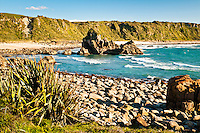 Rugged coastat Cape Foulwind - Buller Region, Central West Coast, New Zealand