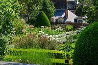 France, Maine-et-Loire (49), Angers, château d'Angers, les jardins, le jardin suspendu planté surtout de médicinales & aromatiques