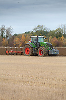 Ploughing in beans that have been broadcast on to stubble<br /> &copy;Tim Scrivener Photographer 07850 303986<br />      ....Covering Agriculture In The UK....