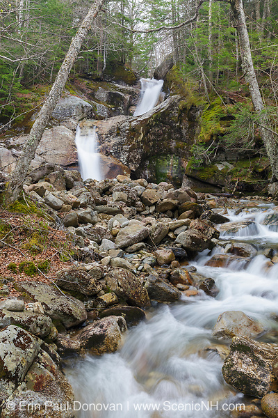 Lafayette Brook Falls in the New Hampshire White Mountains USA during the spring months. This waterfall is located along Lafayette Brook in Lafayette Brook Scenic Area.