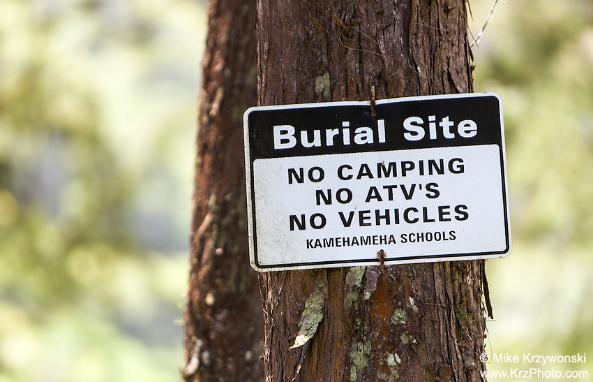 """Burial Site, No Camping, No ATV''s, No Vehicles"" sign posted on tree in Waipio Valley, Big Island, Hawaii"