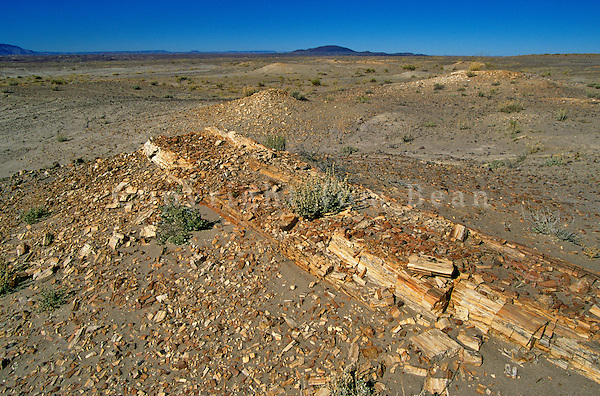 Petrified log eroding from Chinle Formation in the Painted Desert, Navajo Nation, near Cameron, Arizona, AGPix_0055.