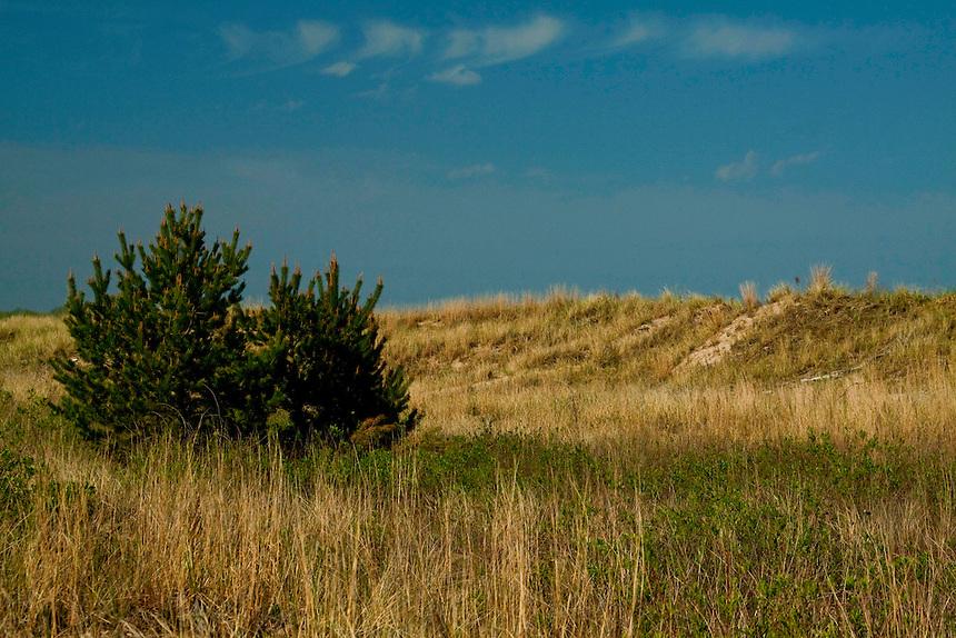 Views of the dune area at Waukegan, Illinois beach along Lake Michigan.