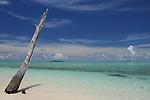 Palau, Micronesia -- Deserted tropical island.