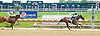 Talented Whiz winning at Delaware Park on 5/23/12