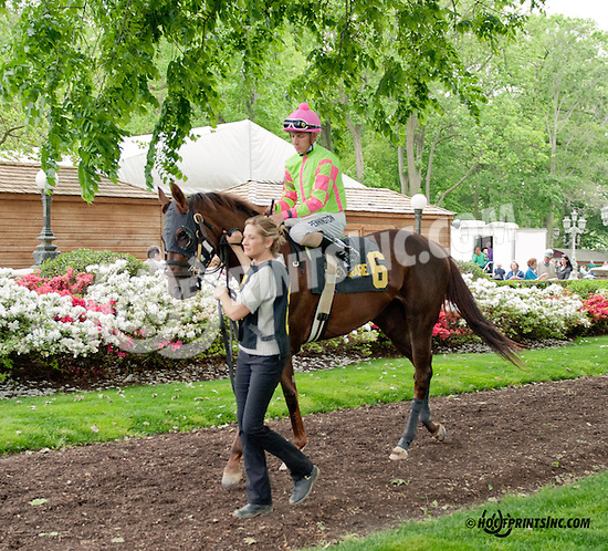 Disco Barbie before The Our Mims Stakes at Delaware Park on 5/18/13