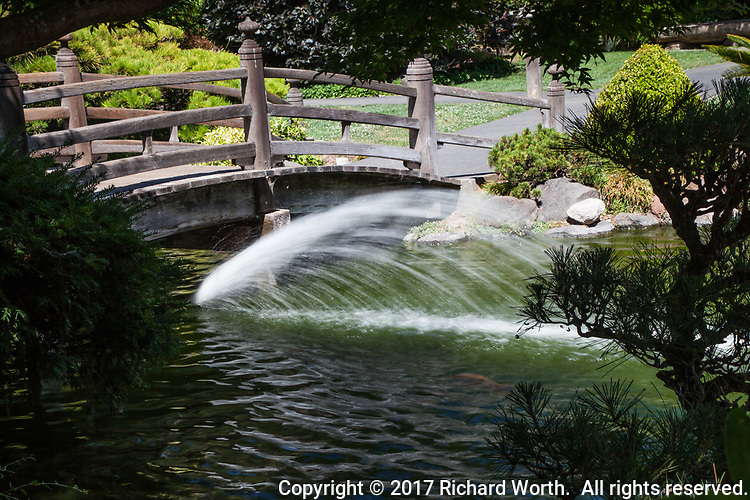 A flowing water fount next to a foot bridge over the koi pond at San Mateo City Park's Japanese Garden.