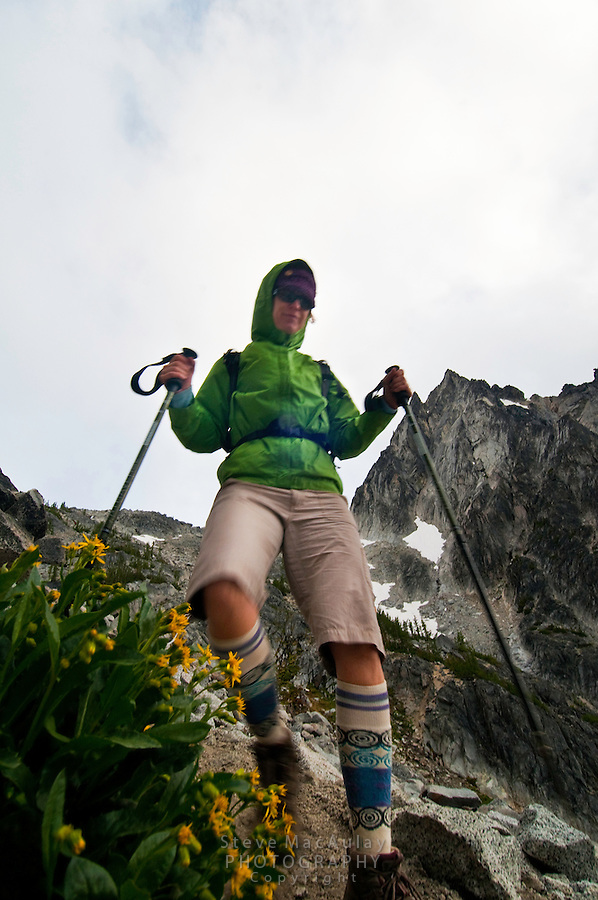 Female hiker with trekking poles descending Asgard Pass with yellow flowers along trail.  The Enchantments, Alpine Lakes Wilderness, WA.